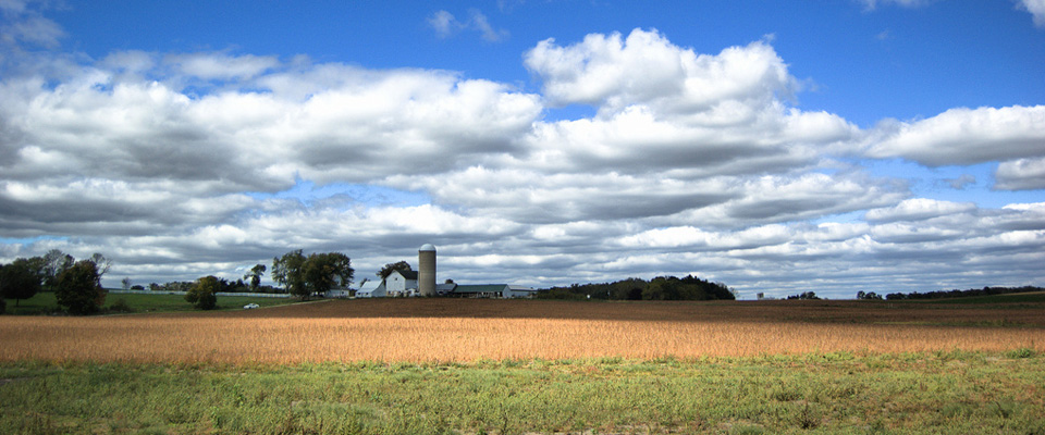 Farm fields of Burlington, WI