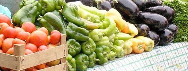 Wellness & Nutrition
